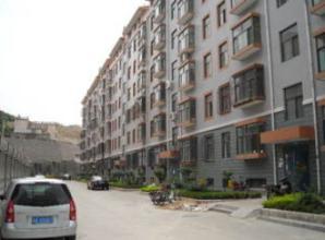 龙盛苑12栋303明装暖气片项目